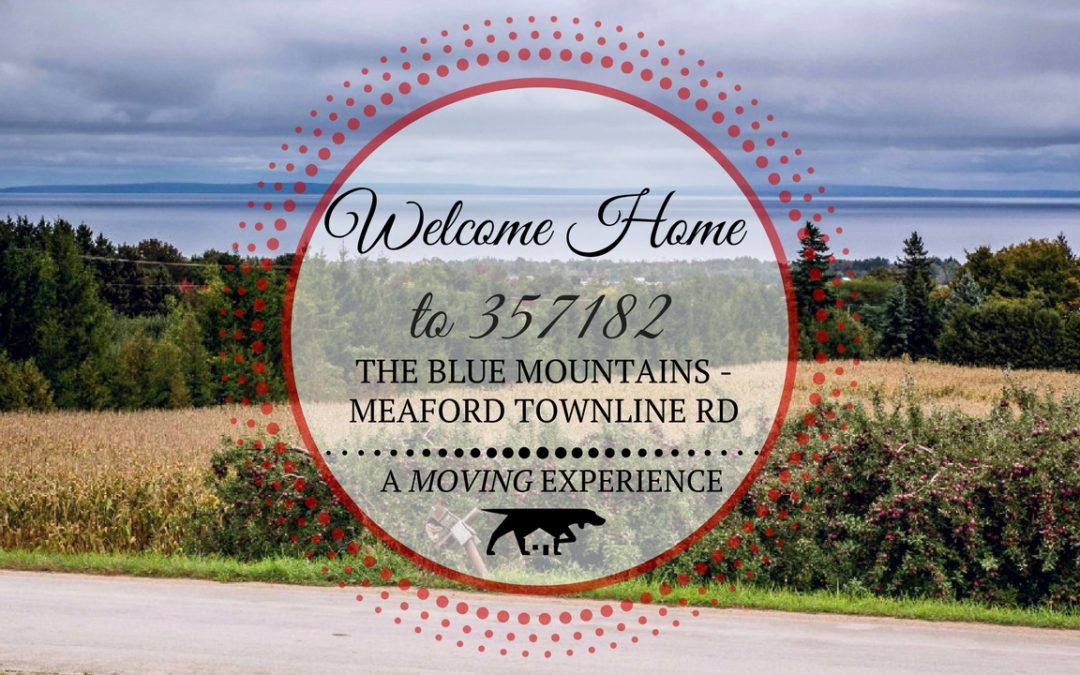 357182 The Blue Mountains – Meaford Townline Road in Meaford, ON