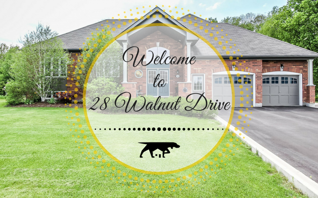 28 Walnut Drive in Wasaga Beach
